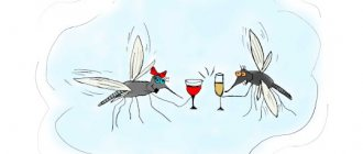 аллергия на комаров