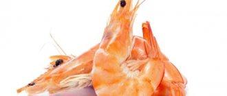 симптомы аллергии на креветки